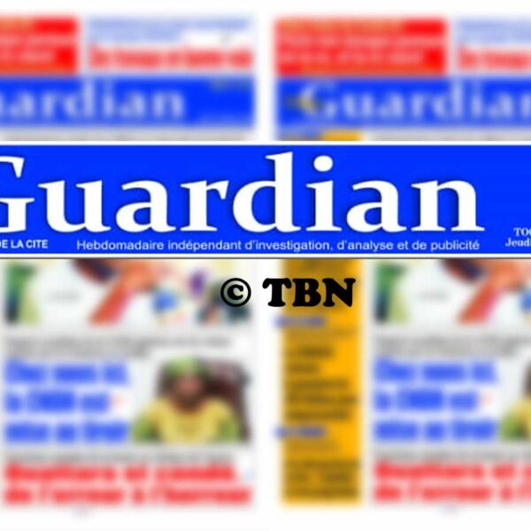 Rich results on Google's SERP when searching for 'The Guardian'